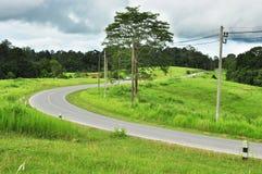 Дорога кривой Стоковое Изображение RF