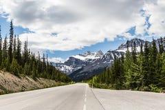 Дорога к бульвару II Icefield Стоковые Фотографии RF