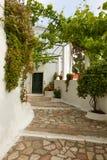Дорога к виску, Корфу, Греции стоковая фотография rf