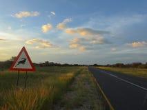 Дорога к голубому небу Стоковые Фото