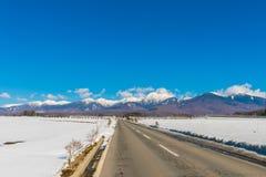 Дорога к горе в зиме (Япония) Стоковое Изображение RF