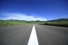 Дорога к горе. Стоковые Изображения RF
