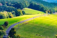 Дорога к деревне стоковое фото rf