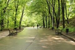 Дорога к парку на холмах воробья Стоковые Фотографии RF