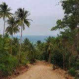 Дорога к пляжу Стоковое фото RF