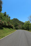 Дорога к природе стоковое изображение rf