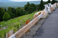 Дорога к пуще стоковое фото rf