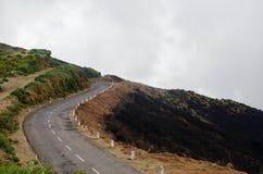 Дорога к холмам до, который сгорели лес Мадейра октябрь 2016 Стоковые Изображения