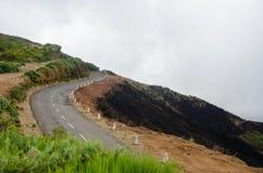 Дорога к холмам до, который сгорели лес Мадейра октябрь 2016 Стоковые Фотографии RF