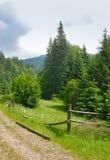 Дорога к Petros среди елей Стоковые Изображения