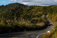 Дорога к Phuka, Nan Стоковое Фото