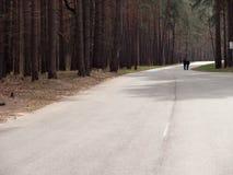 Дорога леса соснового леса глухая люди путешествуют автостопом стоковая фотография rf