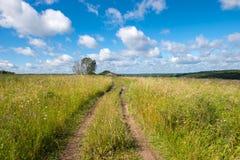 Дорога лета сельская Стоковые Изображения RF