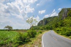 Дорога 2 майн окруженная с горой и лесом Стоковое Изображение RF