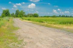 Дорога макадама на краю пшеничного поля в сельском районе, Украины Стоковое Фото