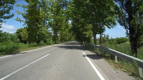 Дорога между деревьями явора в деревне Chaladidi, Georgia сток-видео