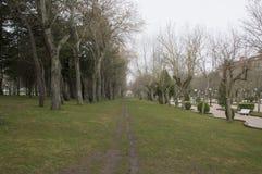Дорога мола в парке Cervantes в Сории Стоковая Фотография