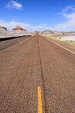 дорога национального парка пущи окаменелая Стоковое фото RF