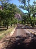 Дорога - национальный парк Сиона Стоковая Фотография RF