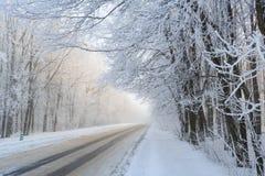 Дорога на ландшафте зимы в лесе Стоковое Изображение RF