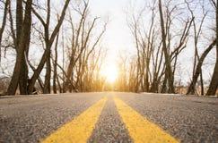 Дорога на восходе солнца Стоковое Фото