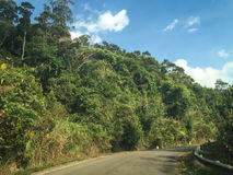 Дорога на национальном парке Puluong в Хайфоне, Вьетнаме Стоковое Фото