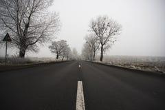 Дорога на холодный туманный день зимы Стоковые Фотографии RF