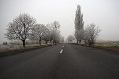 Дорога на холодный туманный день зимы стоковые изображения rf