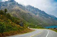 Дорога Новой Зеландии сценарная Стоковые Фото