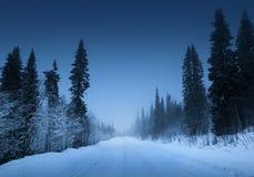 Дорога ночи в лесе зимы Стоковое Фото