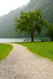 дорога озера к Стоковые Изображения