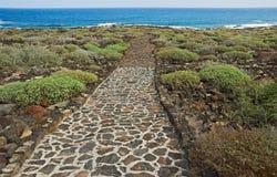 дорога океана к Стоковое фото RF