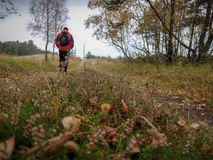 Дорога осени вертела Curonian Стоковая Фотография RF