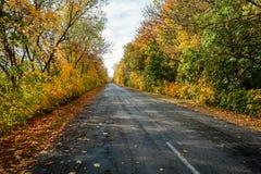 Дорога осени в дне стоковая фотография