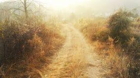 Дорога осени в одичалой горе Стоковое Изображение