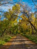 Дорога осени сельская идя в расстояние Стоковая Фотография