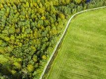 Дорога отделяет дикий лес от поля стоковое изображение rf
