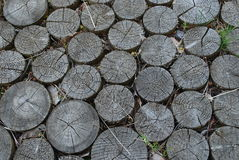 Дорога от блоков кольца деревянных Стоковое Фото