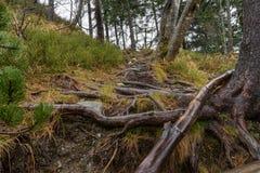 Дорога от камней на горе Стоковая Фотография