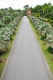 Дорога парка Стоковая Фотография RF