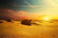 Дорога песчанных дюн пустыни на заходе солнца Стоковое фото RF