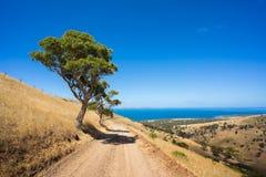 Дорога пляжа Стоковая Фотография RF