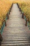 дорога поля деревянная стоковые изображения