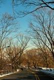 Дорога после идти снег Стоковые Изображения RF