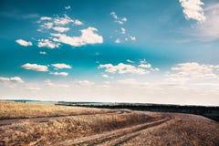 Дорога почвы через поле Стоковое Фото