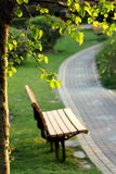 Дорога под деревом Стоковое Изображение