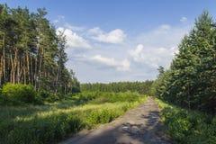 Дорога под облаками Стоковые Фото