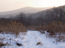 Дорога поля в вечере зимы Стоковое Изображение RF