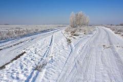 Дорога поля в зиме Стоковая Фотография