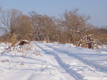 Дорога поля в зиме Стоковое фото RF